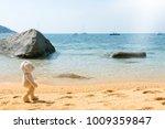teddy bear walking on a sandy... | Shutterstock . vector #1009359847