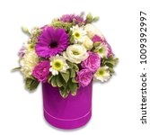 flowers in a pot  on a white... | Shutterstock . vector #1009392997