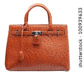 Terracotta Women Handbag...