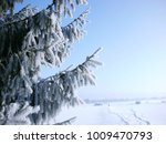 the path  covered with snow ... | Shutterstock . vector #1009470793