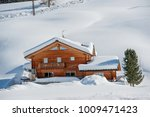 house submerged by the snow | Shutterstock . vector #1009471423