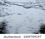 rain drop on water of flooded... | Shutterstock . vector #1009709197