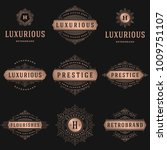 luxury logos templates set