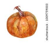 ripe brown pumpkin. watercolor...   Shutterstock . vector #1009759003
