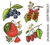 set berries. raspberry ...   Shutterstock .eps vector #1009788157