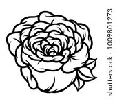 flower rose  black and white.... | Shutterstock .eps vector #1009801273