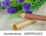 brown lip pencil with flowers... | Shutterstock . vector #1009952653