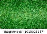 grass green field football... | Shutterstock . vector #1010028157