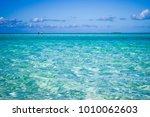 clear  shallow caribbean water  | Shutterstock . vector #1010062603