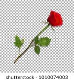 vector illustration of photo... | Shutterstock .eps vector #1010074003