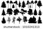 trees set silhouette.... | Shutterstock .eps vector #1010241313
