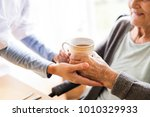 health visitor and a senior... | Shutterstock . vector #1010329933