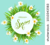 square banner with daffodils on ... | Shutterstock .eps vector #1010343583