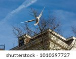 seagull fluing in the city in...   Shutterstock . vector #1010397727