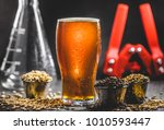 homebrew honey brown beer ... | Shutterstock . vector #1010593447