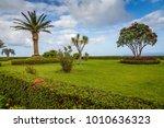 exposure done in the beautiful... | Shutterstock . vector #1010636323