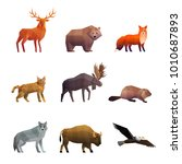 wild northern animals 3d... | Shutterstock . vector #1010687893