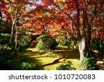 autumn maples in japanese... | Shutterstock . vector #1010720083