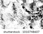 black and white texture in art...   Shutterstock . vector #1010748607