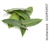 Aromatic Bay Leaves Isolated O...