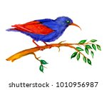 watercolor bird on branch | Shutterstock . vector #1010956987