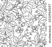 wild rose seamless pattern | Shutterstock .eps vector #1010965057