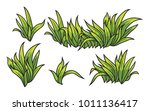 set of grass tufts  clip art ... | Shutterstock .eps vector #1011136417