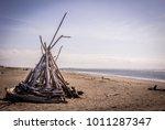 ocean shores  washington   may... | Shutterstock . vector #1011287347