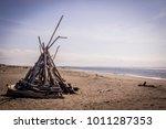 ocean shores  washington   may... | Shutterstock . vector #1011287353
