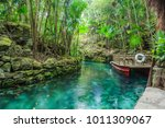 blue river in xcaret  mexico | Shutterstock . vector #1011309067