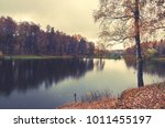 autumn landscape with small... | Shutterstock . vector #1011455197