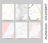marble with golden and rose... | Shutterstock .eps vector #1011456847