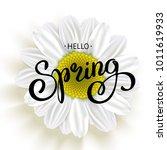 daisy flower and spring hand... | Shutterstock .eps vector #1011619933