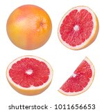 isolated grapefruits.... | Shutterstock . vector #1011656653