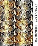 snake skin texture.  texture...   Shutterstock .eps vector #1011778297