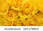 Close Up Of Yellow Roses On Th...