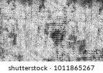 grunge black and white | Shutterstock . vector #1011865267