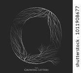 vector letter q of branch or...   Shutterstock .eps vector #1011908677