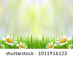 spring or summer abstract... | Shutterstock . vector #1011916123