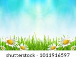 spring or summer abstract... | Shutterstock . vector #1011916597