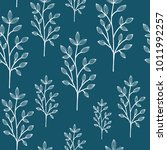 floral seamless pattern with... | Shutterstock .eps vector #1011992257