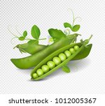 vector green peas. photo... | Shutterstock .eps vector #1012005367