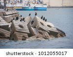 Small photo of Piling of hollow cube concrete blocks as artificial reef structures in Cape Town to protect shore damaged from tide and wave.