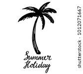 coconut palm tree. logo  icon ... | Shutterstock . vector #1012071667