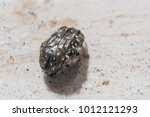a bug on a marble surface. the... | Shutterstock . vector #1012121293