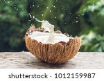Coconut Fruit And Milk Splash...