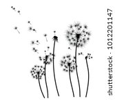Silhouette Of A Dandelion With...