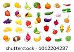 big set of delicious vegetables ... | Shutterstock .eps vector #1012204237