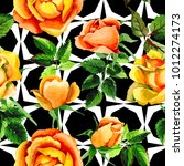 wildflower rose flower pattern... | Shutterstock . vector #1012274173
