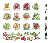 vegetables logo vector healthy... | Shutterstock .eps vector #1012297237